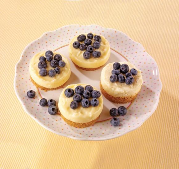Priddy Books Mini cheesecakes