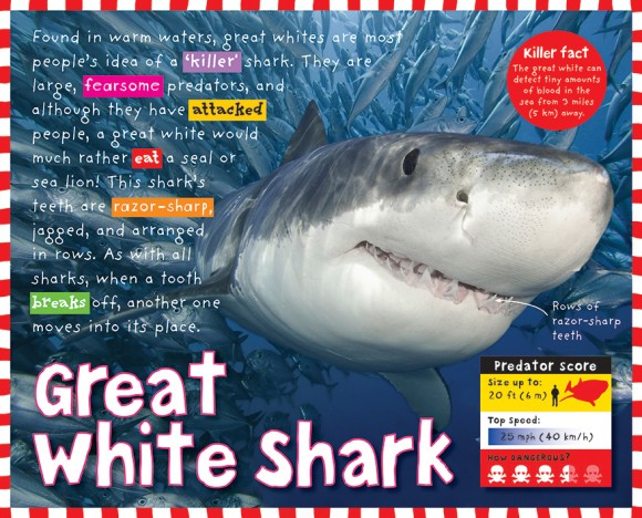 Predators - Great White Shark